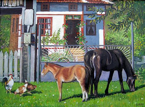 across Bulgaria 7 by Stoian Pavlov