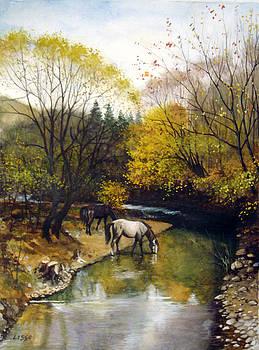 across Bulgaria 9 by Stoian Pavlov