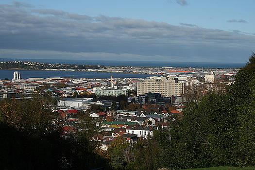 Terry Perham - Across City To South Dunedin