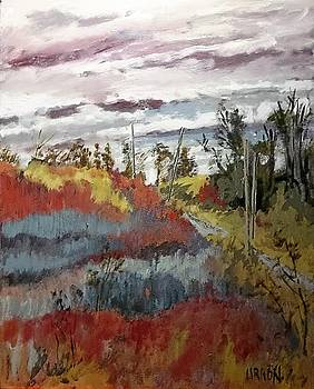 Across The Marshes by Fred Urron