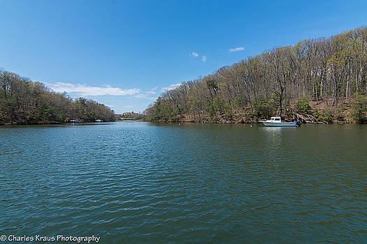 Weeks Creek at Admiral Heights by Charles Kraus