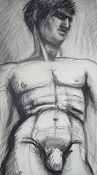 Adonis - Male Nude  by Carmen Tyrrell