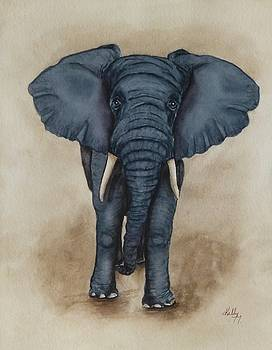 African Elephant by Kelly Mills