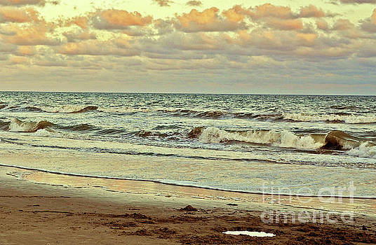 Afternoon Beach Reflections 3 by Lydia Holly