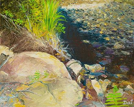 Afternoon beside the Lane Cove River by Dai Wynn