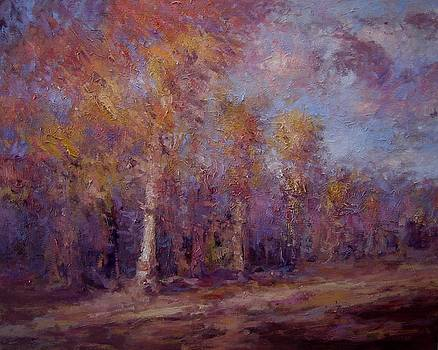 Afternoon light on the trees by R W Goetting