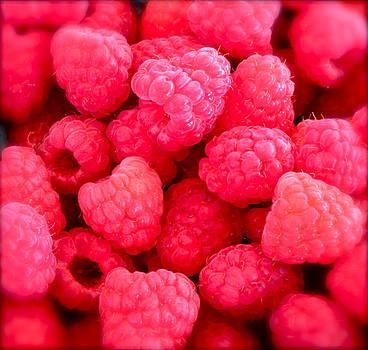Gwyn Newcombe - Agenda for today ... raspberry jam
