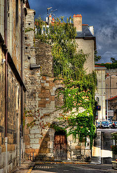 Aging Beauty Vienne France by Tom Prendergast