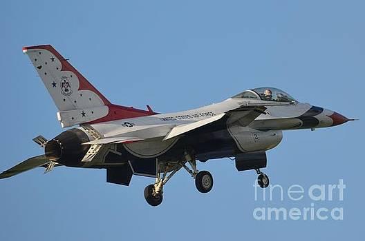Air Force Thunderbird by Carol McGunagle