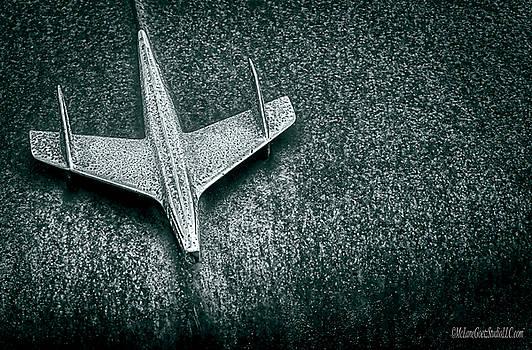 Airplane Hood Ornament by LeeAnn McLaneGoetz McLaneGoetzStudioLLCcom