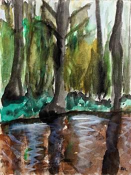 Alabama Swamp by Sheri Parris