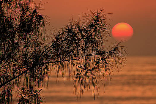 Alandaluz Sunset by Ecuador Images