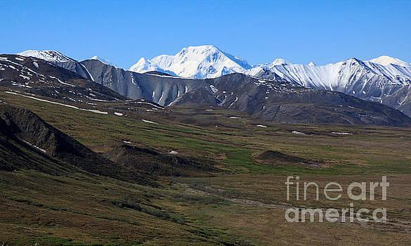 Alaska Scenery by Robert Pilkington