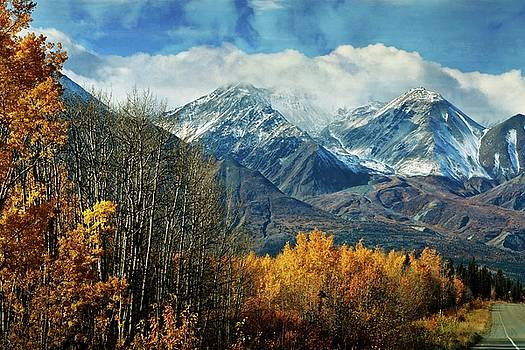 Alaskan Fall 1 by Marty Koch