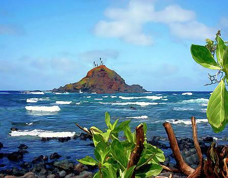 Kurt Van Wagner - Alau Island Maui Hawaii