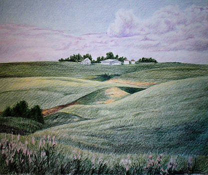 Alberta Province Farm by Theresa Higby