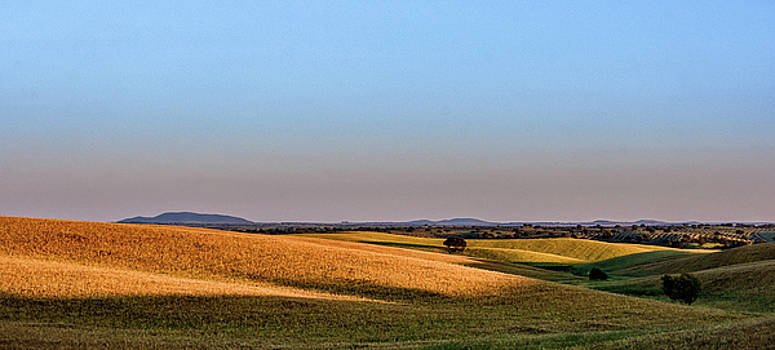 Alentejo Fields by Marion McCristall
