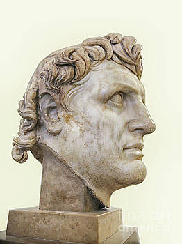 Alexander the great by Patricia Hofmeester