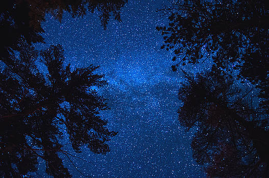 Algonquin Skies by Cale Best