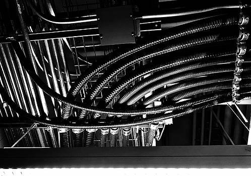 Alien Wiring by Brian Sereda