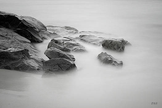 Allens Pond IV BW by David Gordon
