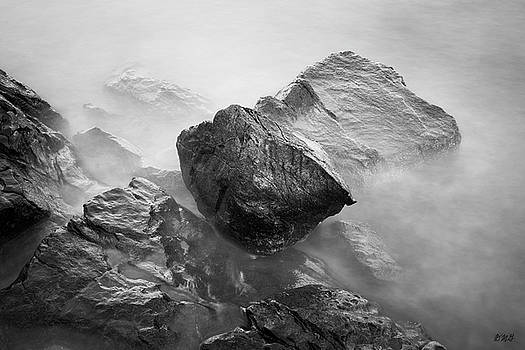 Allens Pond V BW by David Gordon