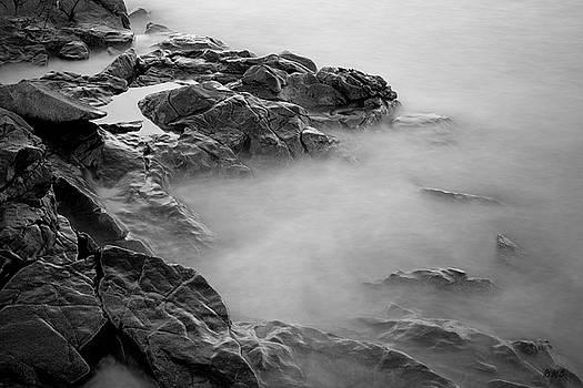 Allens Pond VI BW by David Gordon