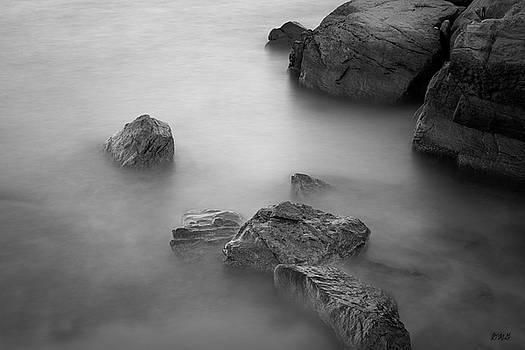Allens Pond VIII BW by David Gordon