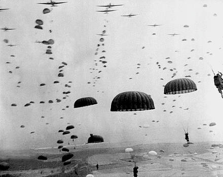 Allied Airborne Troops Parachuting During WWII by War Is Hell Store