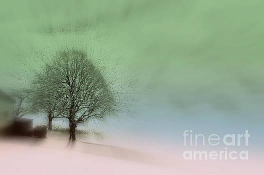 Susanne Van Hulst - Almost a dream - Winter in Switzerland