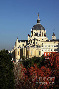 Almudena Cathedral and Autumn Trees Madrid by James Brunker