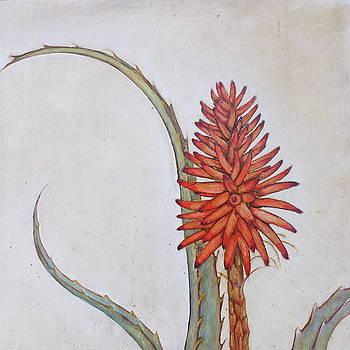 Aloe by Genevieve Smith