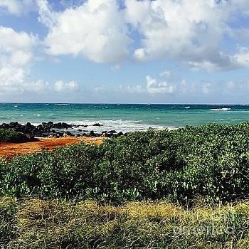 #aloha #adventure #makemoments by Sharon Mau
