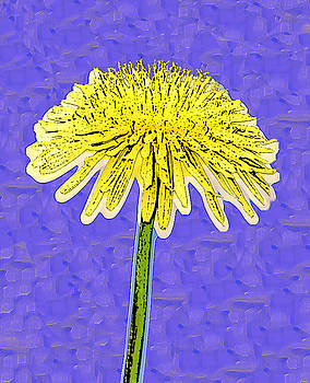 Alone Flower 5 by Bruce Iorio