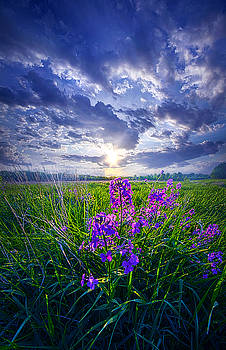 Alone In Our Dreams by Phil Koch