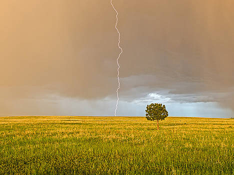 Alone in the Storm by Jim Bennett