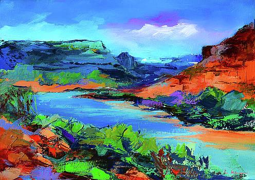 Along Colorado River - Utah by Elise Palmigiani