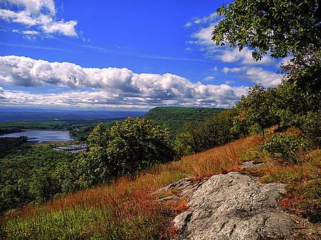 Along the Ridge by Raymond Salani III