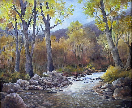 Along the Sabinal River by Tina Bohlman