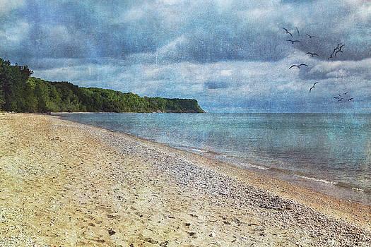 Along the Shores by Kim Hojnacki