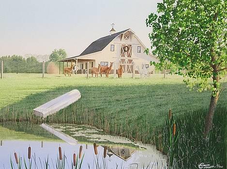 Alpaka Farm by C Robert Follett