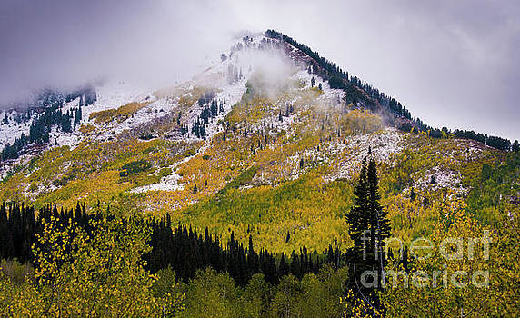 Alpine Loop Autumn Storm - Wasatch Mountains  by Gary Whitton