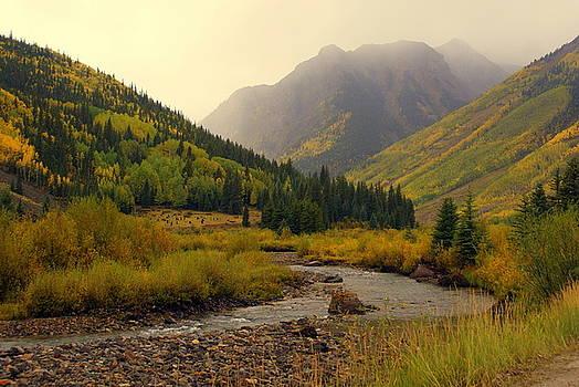 Marty Koch - Alpine Loop Fall
