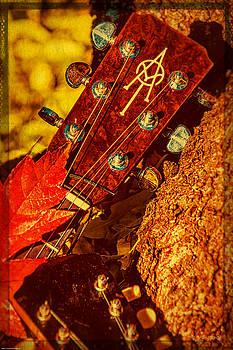Mick Anderson - Alvarez in Autumn