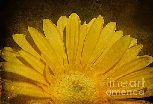 Nina Stavlund - Always Sunshine..