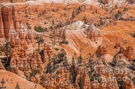Amazing Terrain by Peggy J Hughes