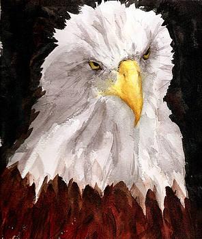 American Eagle by Rhonda Hancock