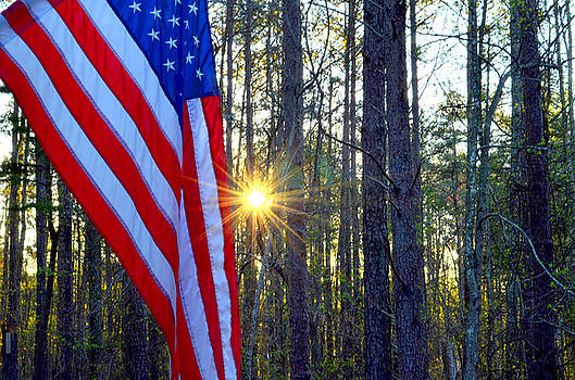 American Flag by Charles Bacon Jr