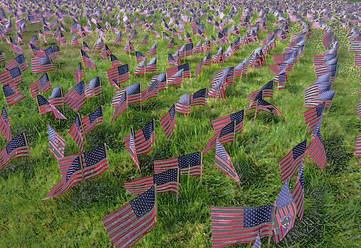 American Flags by Anne Mott