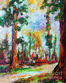 Ginette Callaway - American National Parks Redwood Trees